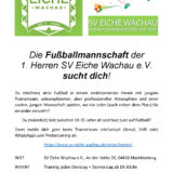 SV Eiche Wachau - wir suchen dich!